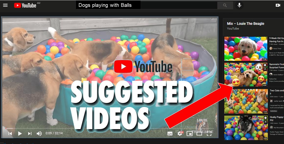 Echo Chambers & YouTube algorithms